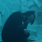 """DREAM STATE, """"Twenty Letters"""" è il singolo e video di lancio del debut album """" Primrose Path """""""